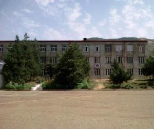 Aleksanyan_Irina2